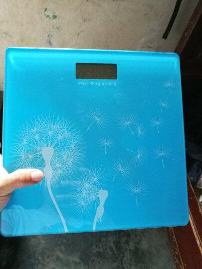 拜杰(Baijie)电子人体秤体重称 家用钢化玻璃人体秤精准台称电子称 蓝色 晒单图