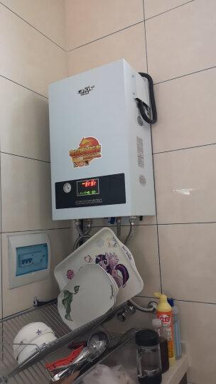 佳弗斯(Cafos)壁挂炉家用电采暖炉采暖洗浴两用即热式电热水锅炉8KW-14KW地暖炉 采暖洗浴两用8KW单相电 晒单图