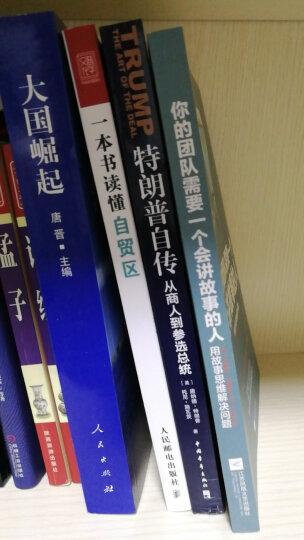 大国复兴:中国道路为什么如此成功 晒单图