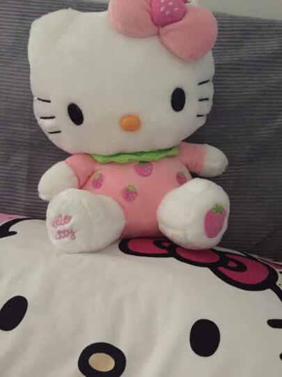 澳捷尔Hello Kitty系列 毛绒玩具 坐式凯蒂猫公仔 情人节七夕送女友生日礼物 橘色桔子KT 26寸68cm 晒单图