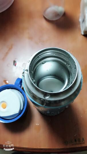 膳魔师THERMOS 儿童水杯保温杯吸管杯学饮杯便携防漏两用杯 FFG-603WF BLN 晒单图