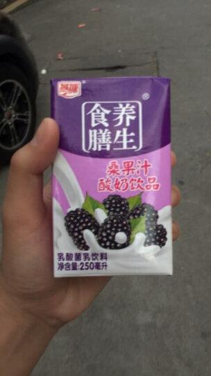 燕塘 桑果汁常温酸奶牛奶乳酸菌饮品早餐奶250ml*16盒/箱 晒单图