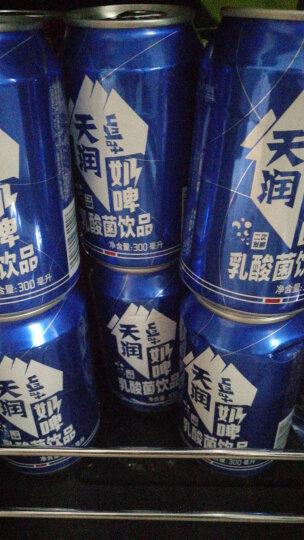 天润(terun) 新疆天润奶啤牛奶乳酸菌网红发酵非奶非啤不含酒精饮品300mlX12罐 晒单图