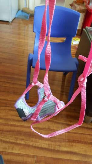 康贝尼小狗胸背带牵引绳 泰迪贵宾比熊博美小型犬遛狗绳 宠物绳子外出用品 红迷彩 L/胸围30-44cm 晒单图