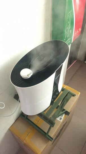 奔腾(POVOS)加湿器5.5L大容量上加水卧室婴儿家用办公室客厅空调房静音迷你香薰机触控感温空气增湿 PJ8005 晒单图