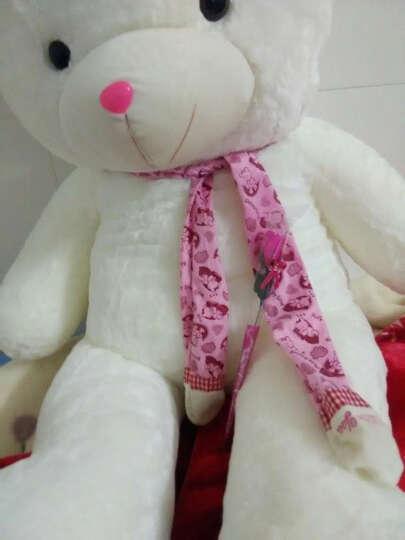 魔法龙 泰迪熊公仔毛绒玩具围巾熊大号抱抱熊狗熊布娃娃玩偶送女朋友礼物儿童玩具 红色围巾熊 80厘米 晒单图