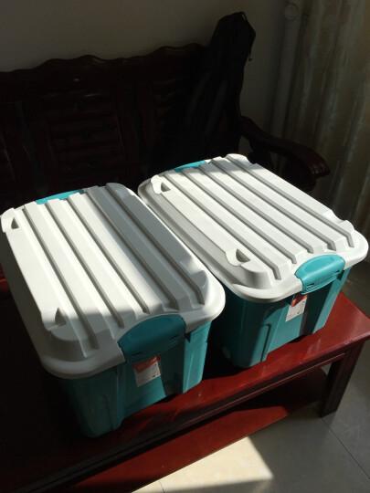 禧天龙 Citylong 塑料整理箱大号带轮储物箱玩具收纳箱2个装蒂梵红+蒂梵绿 60L 6055 晒单图