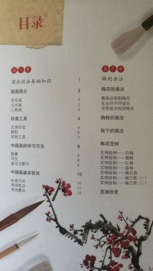 国画基础入门 梅兰竹菊(全彩) 晒单图