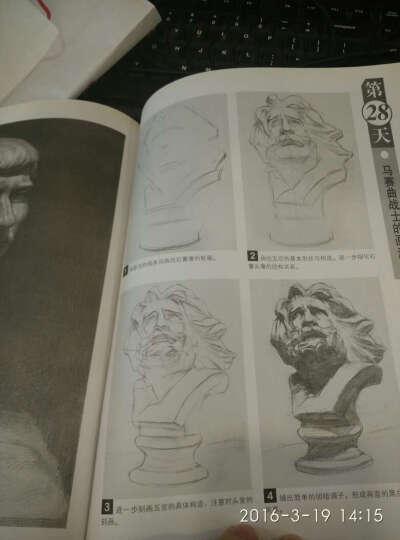 零起步学素描丛书:石膏头像30日速成 晒单图
