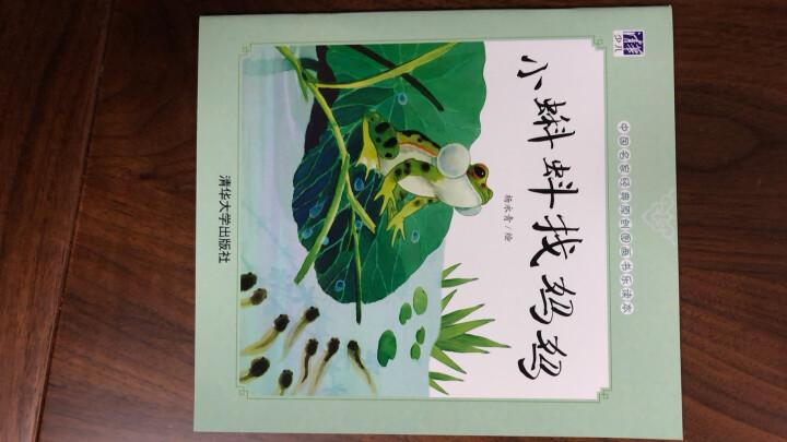 中国名家经典原创图画书乐读本朱成梁系列(套装共4册) 晒单图