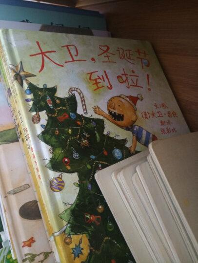 大卫,圣诞节到啦! 大卫不可以系列 幼儿图书 绘本 早教书 儿童书籍 晒单图