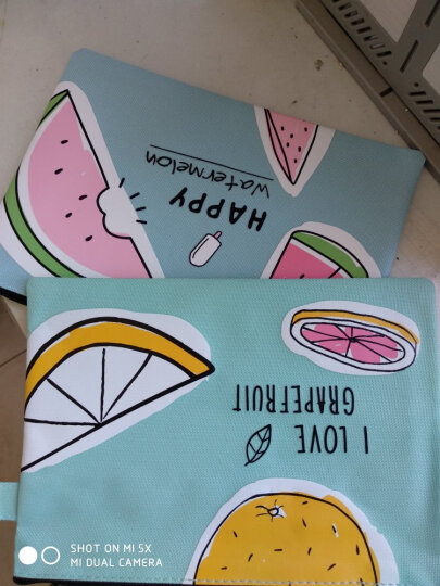 栢利图(BOLEITUN) A4手提牛津帆布文件袋 韩国学生卡通可爱小清新拉链收纳资料包 A5菲尔果园西瓜 晒单图