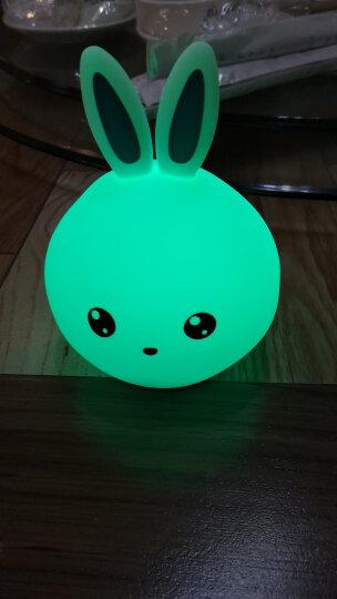儿童生日礼物7-14岁小孩10岁女孩送女友女生小朋友小学生小女孩男孩女儿小夜灯兔子灯实用拍拍灯小男孩 开心兔+遥控板+送礼袋+彩纸包装 晒单图