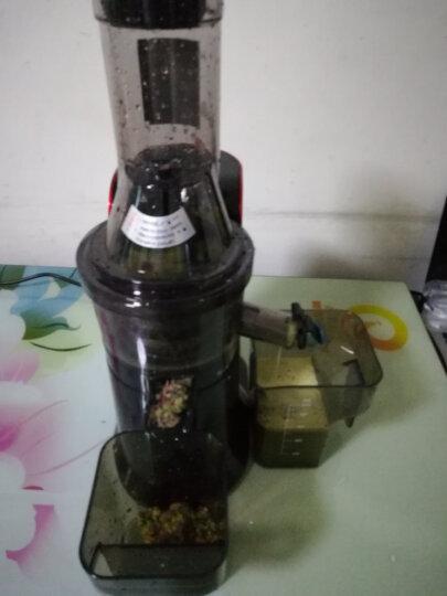 SKG 榨汁机家用渣汁分离慢速原汁机大口径多功能全自动果汁机电动蔬菜迷你多汁 酒红色A9 晒单图