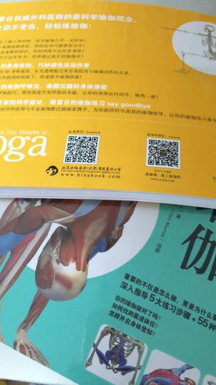 瑜伽3D解剖书:肌肉篇+动作篇(套装共2册) 晒单图
