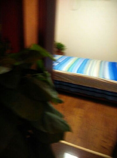 1罗盛凯丽  床裙单件 床罩1.8米 床垫保护罩1.5米单人床套印花床垫防滑罩子1.2米家纺床 纷飞挚爱 2*2m床裙+夹棉枕套 晒单图