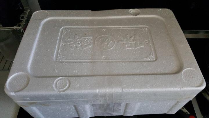 深态 章鱼足福建冷冻1.6kg-1.5kg 3-5只 袋装八爪鱼足火锅海鲜年货 晒单图