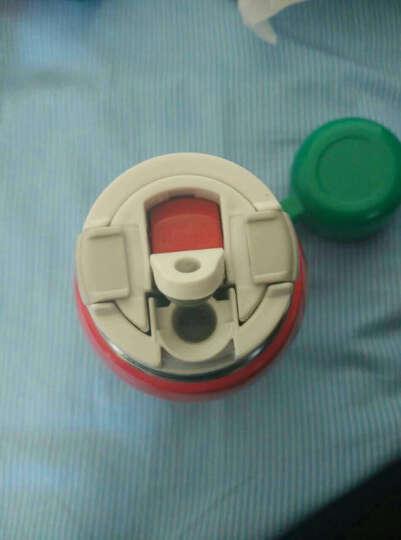 虎牌(TIGER) 日本儿童保温水壶 宝宝水杯 保冷杯直饮杯学饮杯 婴儿吸管杯 圣诞礼物 鼹鼠-台湾版(碗盖+吸管头) 晒单图