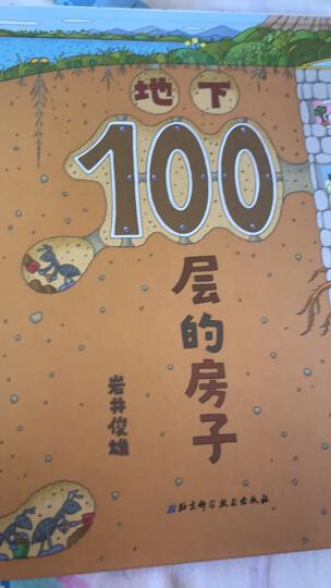 100层的房子系列(迷你版套装全3册) 晒单图