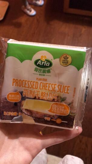 爱氏晨曦(Arla)奶酪切片 160g 奥地利进口(8片装 再制干酪) 晒单图
