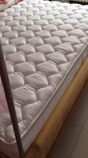 美国金可儿(Kingkoil) 弹簧床垫 双人床垫偏软 五星级君澜酒店  席梦思床垫 明月 明月 1.8米*2米*0.28米 晒单图