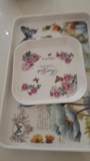新运隆 欧式塑料长方形托盘杯子茶盘家用客厅水果盘糖果盘 紫丁香大号 晒单图