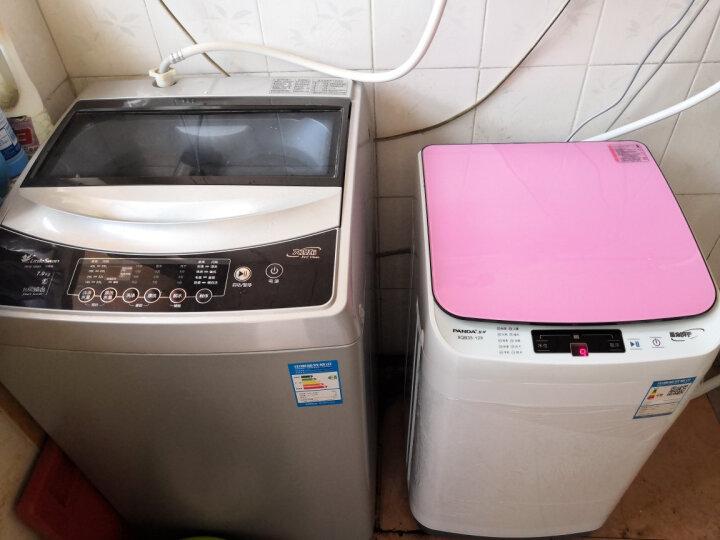 熊猫(PANDA)XQB48-1487 洗衣机全自动家用小型迷你波轮小洗衣机儿童 宿舍 4.8KG白色蒸煮洗 晒单图