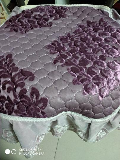 辛一中餐椅垫加厚 椅子垫坐垫 办公室椅垫 学生凳子垫座垫 丝绒提花紫色 43x47cm 晒单图
