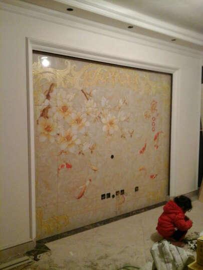 晶玉华庭 瓷砖背景墙 电视背景墙瓷砖 客厅影视墙3d微晶石 现代欧式  家和富贵 微晶石精雕+镶金/0.1平方 晒单图