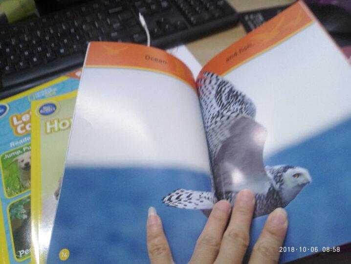 National Geographic Readers: Swing Sloth!  Explore the Rain Forest国家地理少儿版:晃荡的树赖!探索热带雨林 英文原版 晒单图