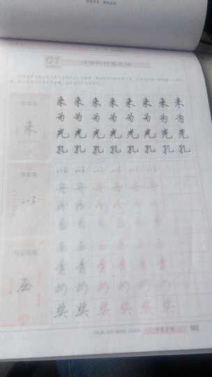 华夏万卷·田英章硬笔书法入门教程:行书速成练习 晒单图