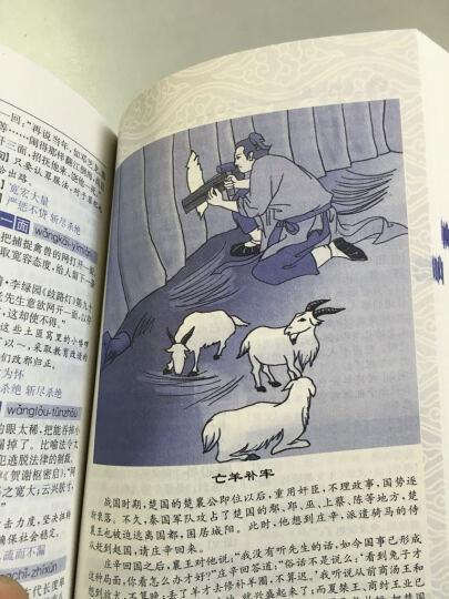 九年义务教育系列工具书 学生新华成语词典(新版 双色插图本) 晒单图