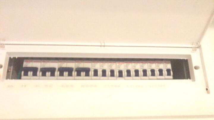 德力西 空气开关 小型断路器家用空开短路过载保护器空调热水器总闸 1P 20A 晒单图