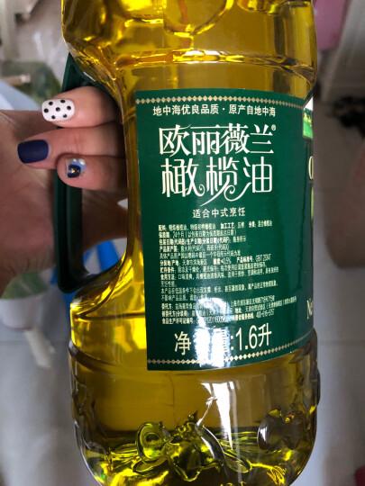 欧丽薇兰 Olivoilà 食用油 压榨 纯正橄榄油 1.6L 晒单图