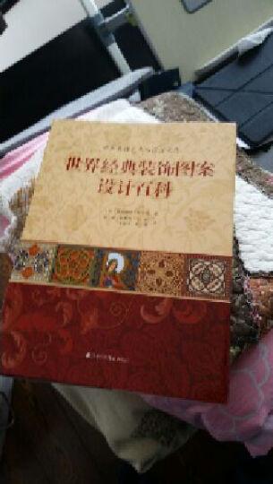 世界经典装饰图案设计百科 提升设计师自身素养和文化底蕴的参考书籍 晒单图