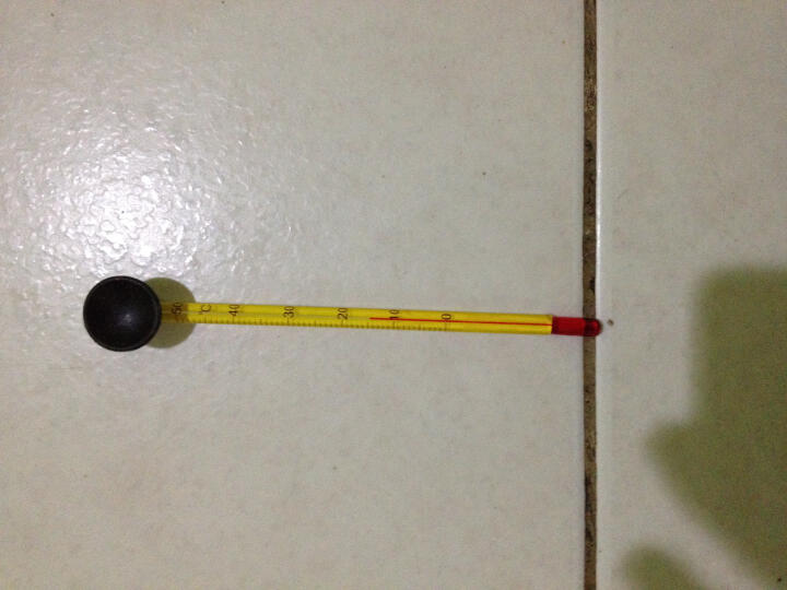 喜瑞sera鱼缸温度贴片纸变色液晶显示玻璃温度计水族箱水温计 喜瑞(玻璃)温度计 晒单图