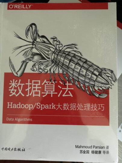 数据算法:Hadoop/Spark大数据处理技巧 晒单图