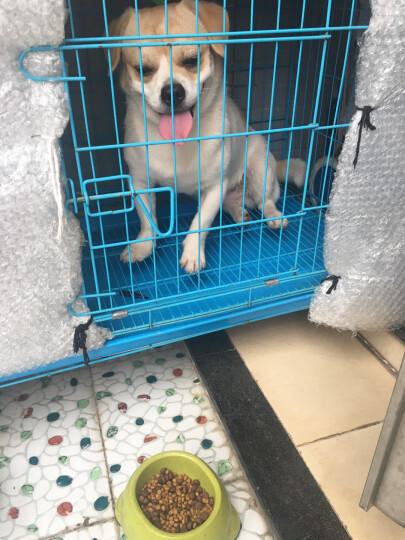 力狼狗粮 无谷鲜肉金毛拉布拉多杜宾罗威纳柯基喜乐蒂中大型犬 幼犬1.5kg 晒单图