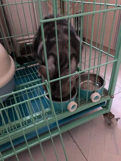 伟嘉 宠物猫粮猫湿粮 成猫妙鲜包 精选小黄鱼味85g单袋装 晒单图