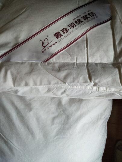 霞珍 床垫家纺 全棉70%白鸭绒加厚保暖床褥 星级酒店羽绒床垫 白色 填充量5.94kg 双人1.8米床 晒单图