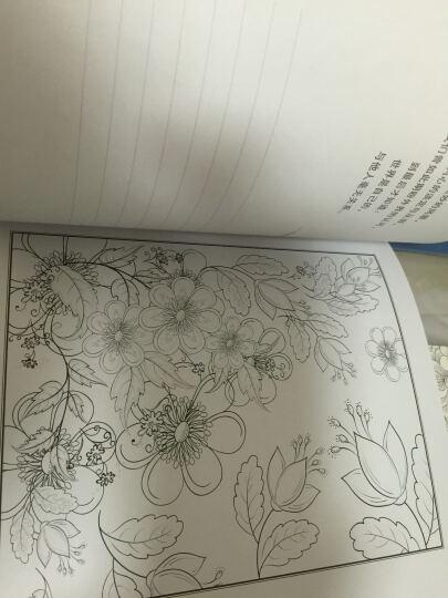 如花时光:一本邂逅美好的涂色书 晒单图