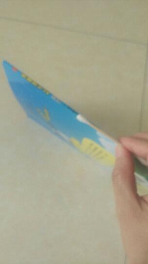 中国经典动画大全集 黑猫警长 注音版全5册 3-6岁 儿童经典故事漫画书 绘本读物 晒单图