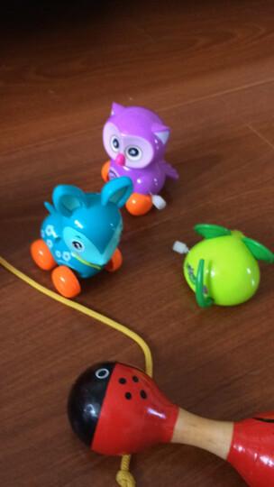 熙悦(XIYUE) 婴幼儿可爱上链发条多件套组合玩具宝宝趣味上弦学爬行小玩具男孩女孩卡通会跑的玩具 熊鸭水果章鱼猫头鹰蜜蜂翼龙狗鼠小鹿 晒单图