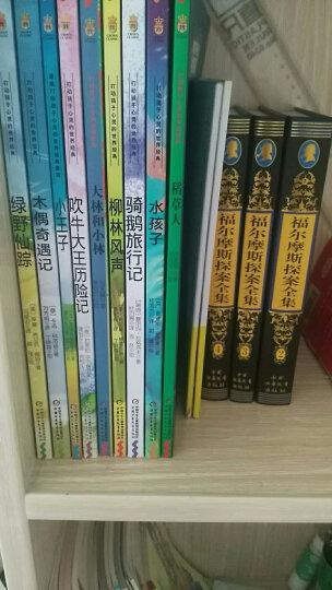 少年特种兵第8辑 高原特种战系列(套装共4册) 晒单图