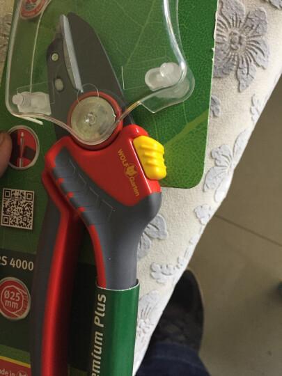 德国进口狼工具WOLF-Garten园艺修枝剪 手工具剪树枝剪刀 花园果园果树剪 RS5000 精修剪 晒单图