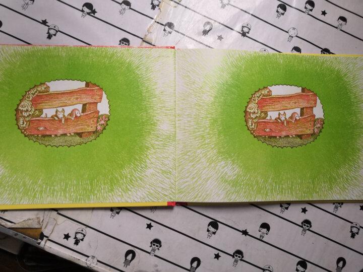 Highlights美国小学生经典数学游戏第二辑(套装共6册) 晒单图