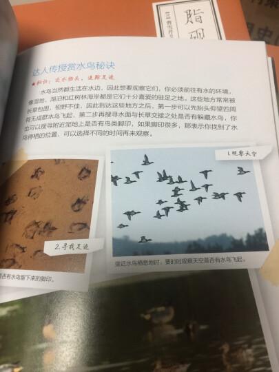 中国国家地理:自然观察达人养成术 晒单图
