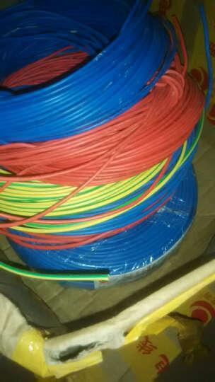 金龙羽 电线电缆ZR/ZC BVR2.5平方 国标铜芯线单芯多股软线 阻燃家装线100米 阻燃/黄绿双色多股 (软线) 地线 晒单图