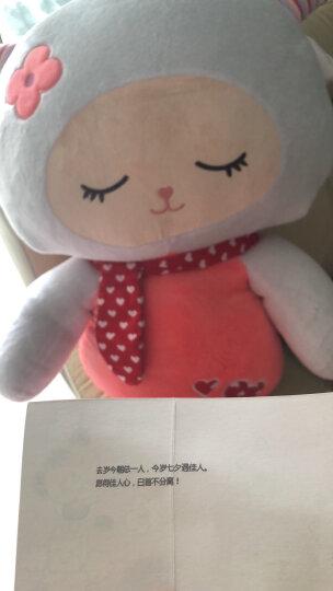 粉小猪 可爱小绵羊公仔毛绒玩具抱枕小美羊玩偶布娃娃儿童生日礼物 粉红色绵羊 1米 晒单图
