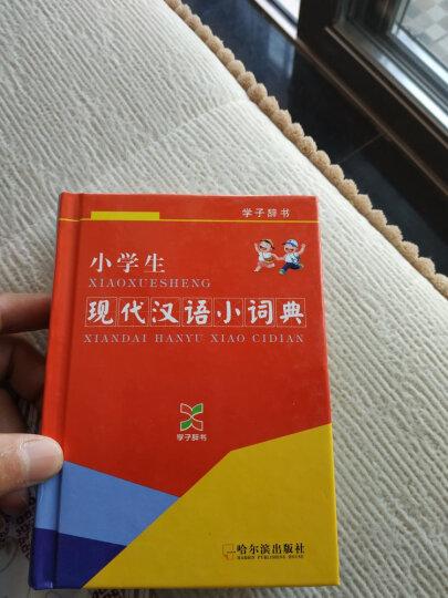 小学生现代汉语小词典(学子辞书) 晒单图